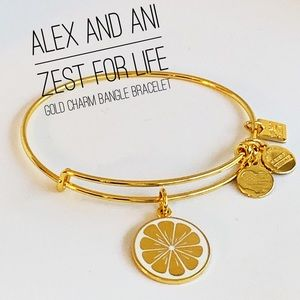 🆕 Alex and Ani Zest for Life Gold Bangle Bracelet